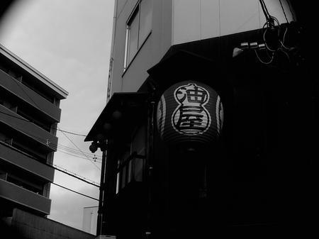 SUNP0060.jpg
