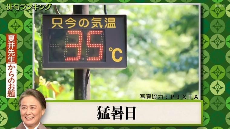 夏井先生VSみちょぱ 遺恨バトル再び! , もう一度楽しむプレバト